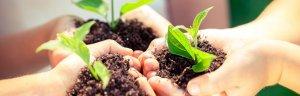 Ecosostenibilità Tisco